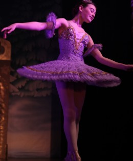 Clara and The Nutcracker